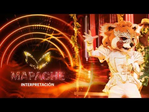 #MapacheEs ¡Juanpa Zurita flota con la interpretación de Mapache! | Interpretación