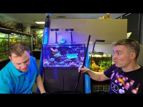 Stop Jumping Fish! DD JumpGuard