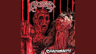 Morgue Defilement (Live)