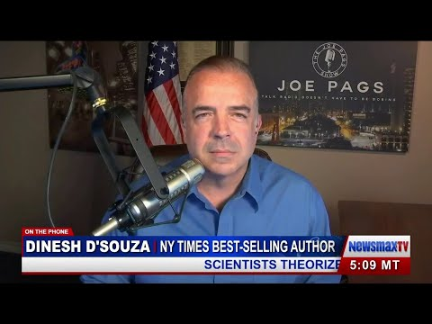 Dinesh D'Souza on 'Pardon' Phone Call From Pres. Trump