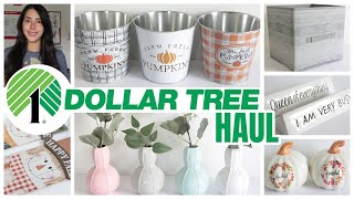 DOLLAR TREE HAUL AUGUST 2020
