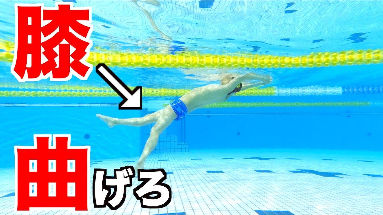 【嘘?】「キックは膝曲げない?」 クロール 水泳