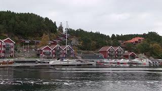 Terhi boat-Yamaha 9.9 4 stroke