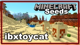 Amazing Rare Minecraft Seed: ibxtoycat (Minecraft Bedrock Edition Seeds)