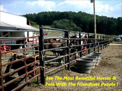 2013 Allegheny Mountain Championship Rodeo Promotion Ad