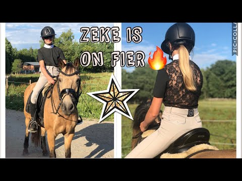 ZEKE IS BACK🔥 | Vlogg-vecka Dag 5🐴