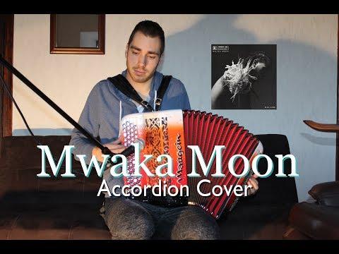 Kalash ft. Damso - Mwaka moon (Accordion Cover)