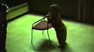 funny video clips 2014 www.WhatsApp8.Com