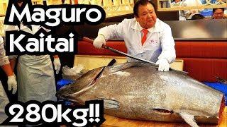 280KG!! TAGLIO TONNO BESTIALE!!! - Vivi Giappone