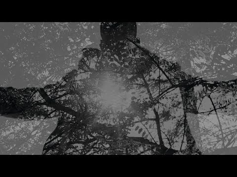 Shabazz Palaces - An Echo From The Hosts That Profess Infinitum [OFFICIAL VIDEO]
