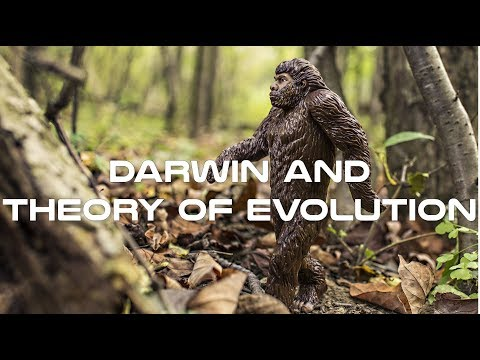 Darwin and Theory of Evolution Documentary
