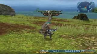 Final Fantasy XII Attack Animations