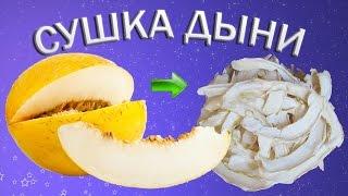 Сушеная дыня в сушилке для фруктов