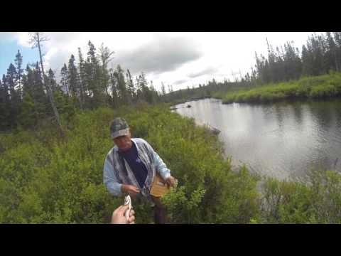 Trout Fishing In New Brunswick Canada