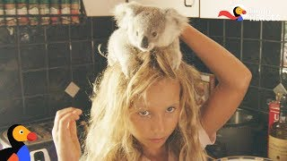 Little Girl Is An Expert Koala Rescuer | Dodo Heroes Season 1