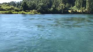 Pesca Rio San Pedro Los Lagos Chile 4