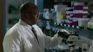 Malaria Microscopy - A Step by Step Guide