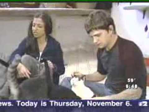 Pet Central - He's an animal lover. Another reason why I like Rob Thomas so much
