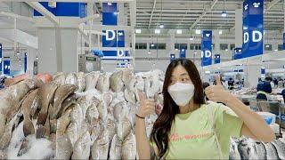 [승무원Vlog] 노량진 뺨치는 두바이 수산시장 투어 …