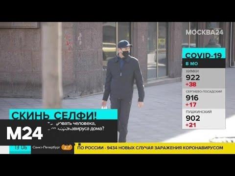 """Как работает приложение """"Социальный мониторинг"""" - Москва 24"""
