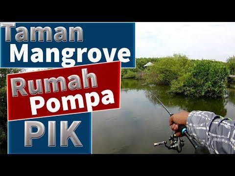 Tempat Mancing Casting Ultralight di Jakarta | Ultralight Fishing