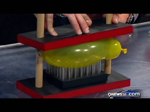 Bed of Nails - Cool Science Experiment