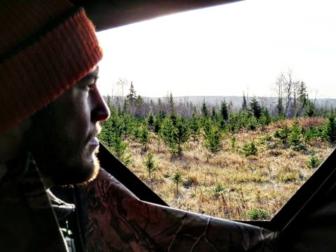 Northern Ontario Deer Hunting- RockRib OutDoors