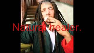 Julian Marley-Lemme Go Lyrics