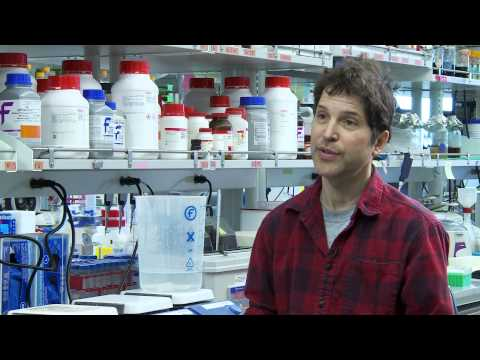 The Molecular Engineering and Sciences Institute, University of Washington