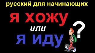 № 421 Глаголы русского языка: Я хожу vs Я иду