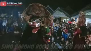 Seruu!!! Full tawuran sampai di hentikan Simo Barong Rogo Samboyo Putro Live Malang