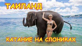 Катание на слонах. Дочка в восторге!!! Пхукет. Таиланд.