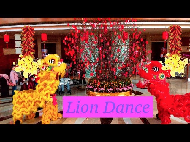 Traditional Chinese New Year Lion Dance ?? 2018