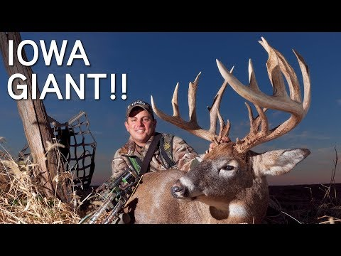 GIANT Iowa Buck In Rut | CRAZY Rut Hunting Action | Rattled To The Base Of The Tree
