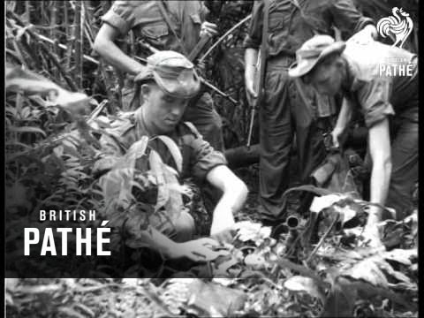 Malayan Jungle Patrol Aka Malaya Report (1953)