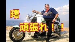必ずリングに戻る。大相撲の元横綱でプロレスラーの曙太郎(48=王道...