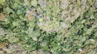 Goroka, Papua New Guinea (PARADISE)-Drone Footage