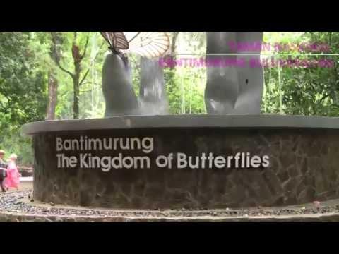 BANTIMURUNG NATIONAL PARK / MAKASSAR