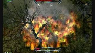 Gameplay del Mago Dragone, nel quale è alle prese con il boss della campagna principale risiedente nella palude a est. E' uno dei boss più difficili da uccidere ...