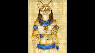 Трёхцветные кошки приносят счастье. Это Аська старшая.