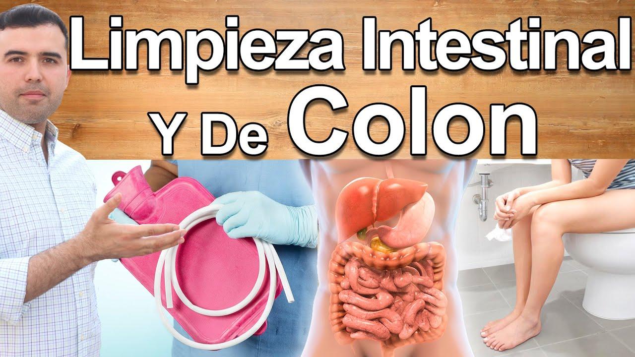 Limpieza Intestinal Y De Colon - Cuál Es Mejor y Cómo Hacerla - Limpieza Profunda, Desintoxicar