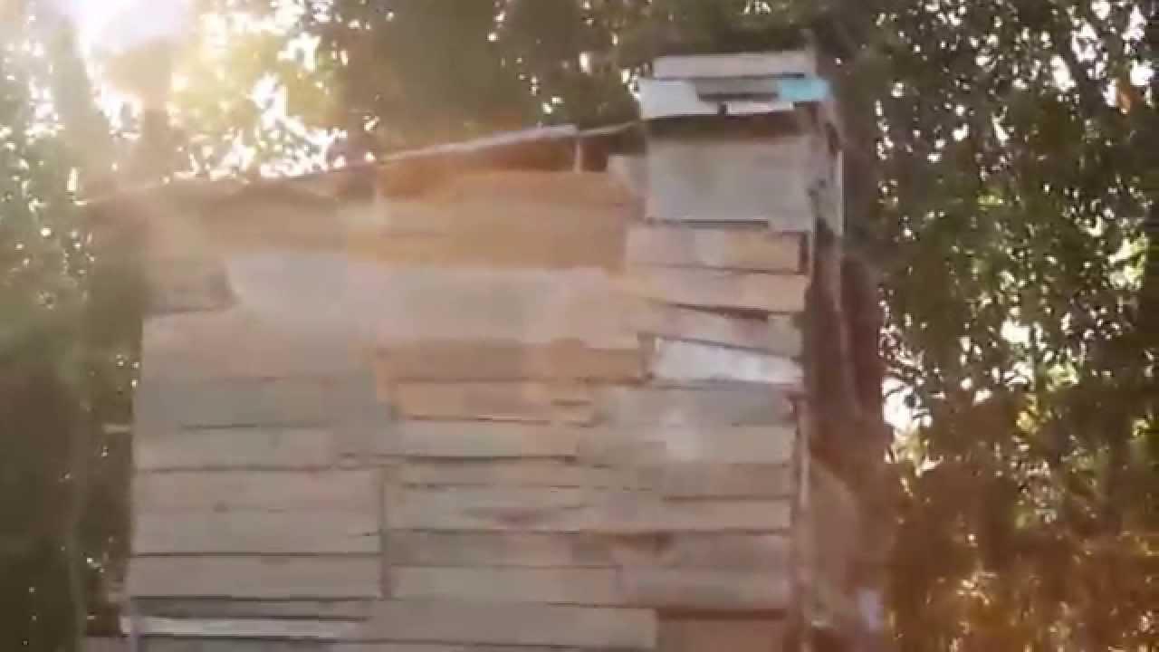 rumah burung walet teraneh yang sudah berpenghasilan 1ons perbulan