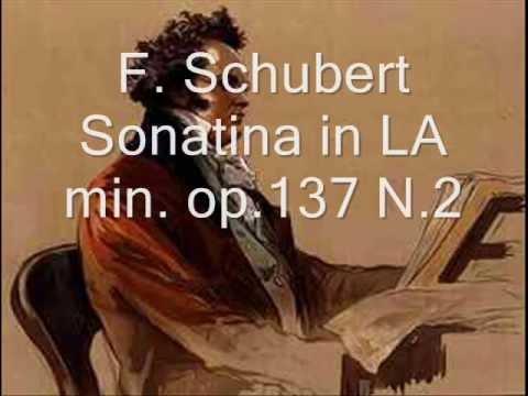 Schubert - Violin Sonata in LA min. op.137 N.2