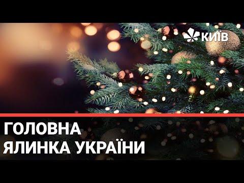 Телеканал Київ: На Софійській площі завершили монтаж головної ялинки країни