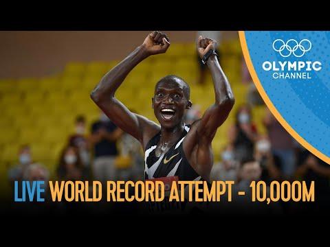 LIVE Joshua Cheptegei's 10,000m World Record attempt! ??