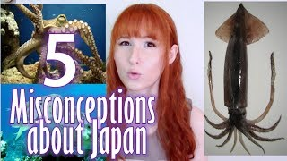 5 Misconceptions about Japan 日本に対する5つの誤解【日英字幕(追記・訂正)】 thumbnail