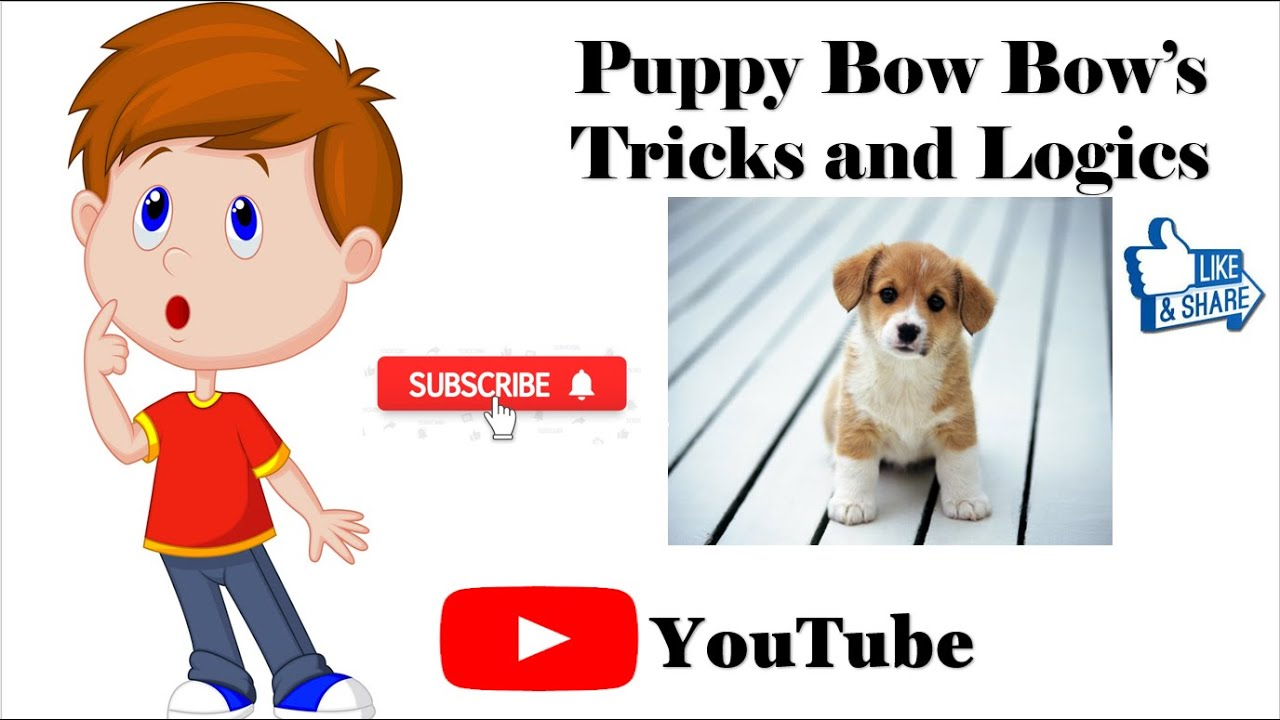 Puppy Bow Bow's Tricks and Logics New Channel 1st Video Promo