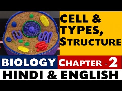 Type of Cell , Structure | Biology Chapter -2 for (SSC , UPSC , NDA , CDS , State PSC)