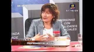 LA CHIA: CONTIENE  OMEGA3 Y CALCIO, RECOMENDADO PARA DIABÉTICOS Y CON COLESTEROL ELEVADO
