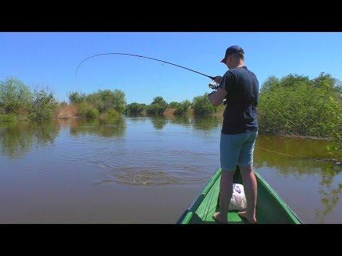 Такая рыбалка  возможна только в Астрахани! Один заброс - две рыбы!